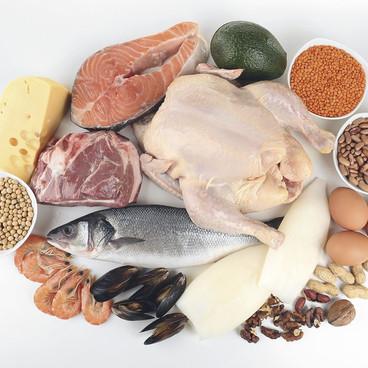 Ernæring og energibehov